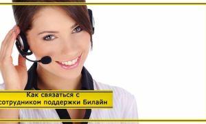 Как позвонить «живому» оператору Билайн напрямую: бесплатные номера телефонов