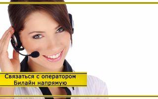 Как дозвониться до оператора Билайн с мобильного: быстро напрямую в 2020 году
