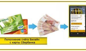 Как пополнить счёт Билайн с карты Сбербанка: различные способы