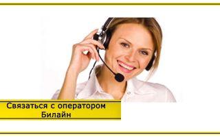 Связь с оператором Билайн – телефон поддержки: как связаться с живым оператором напрямую?