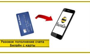 Как положить деньги на Билайн с банковской карты: различные способы
