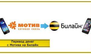 Как перевести деньги с Билайна на Мотив через телефон и обратно: способы