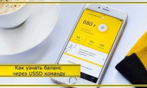 Как проверить баланс Билайн с телефона: способы