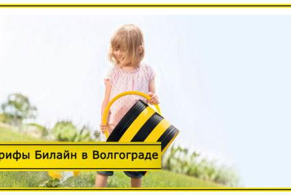 Тарифы Билайн в Волгограде и Волгоградской области в 2020 году