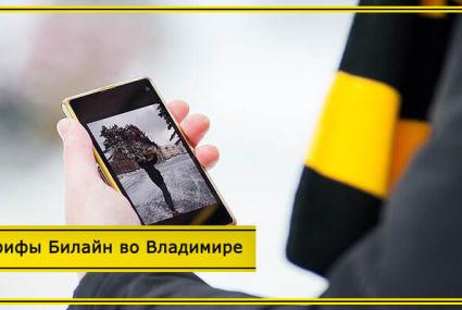 Тарифы Билайн во Владимире и Владимирской области в 2020 году