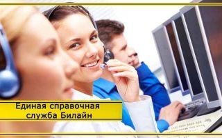Единая справочная служба Билайн – бесплатный номер мобильного
