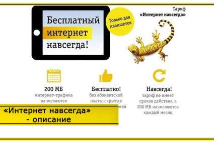 Тариф Билайн «Интернет навсегда» – описание