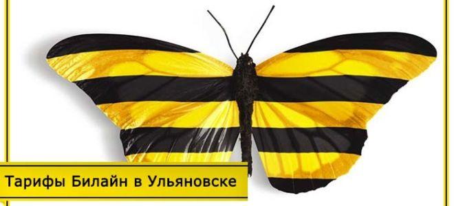 Тарифы Билайн Ульяновск на мобильную связь в 2020 году