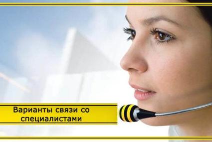 Служба поддержки Билайн – телефоны для связи с центром обслуживания клиентов