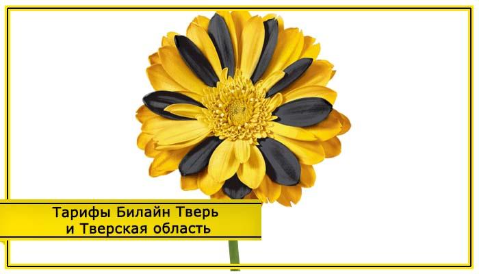 билайн тарифы тверь и тверская область